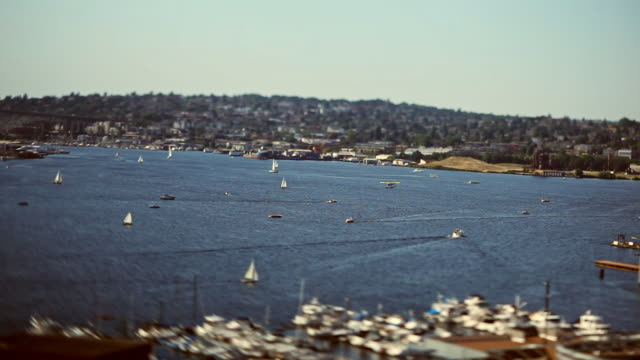 boats sailing in south lake union, seattle, washington - seattle stock videos & royalty-free footage