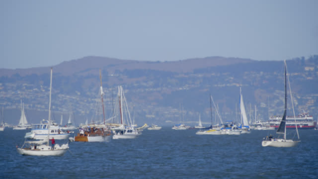 boats - san francisco bay stock videos and b-roll footage