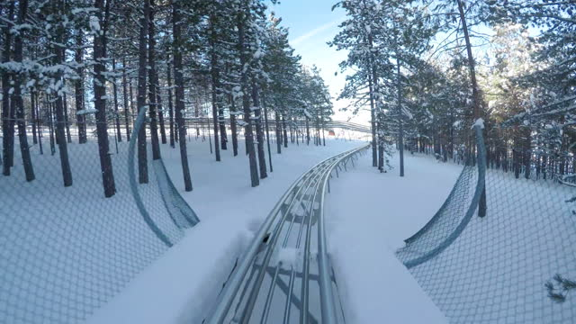 bobsled on snow-b roll - bobsledding stock videos & royalty-free footage