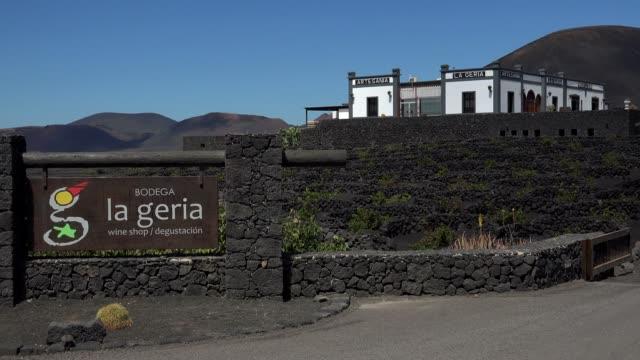 bodega la geria in the valley of la geria, lanzarote, canary islands, spain, atlantic, europe - atlantic islands stock videos and b-roll footage