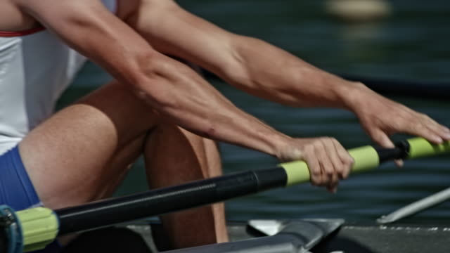 ts bodies of male athletes in training, rowing in a coxless pair - coxless rowing stock videos & royalty-free footage