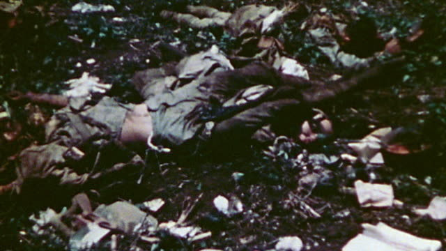 Bodies of war casualties lying on ground where they fell during WWII