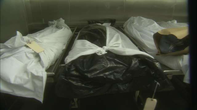 vídeos y material grabado en eventos de stock de body bags on gurneys line the wall in a morgue. - muerte