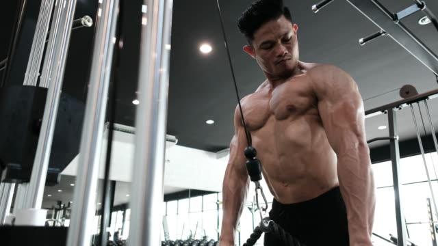 vídeos de stock, filmes e b-roll de o construtor de corpo está exercitando - braço humano