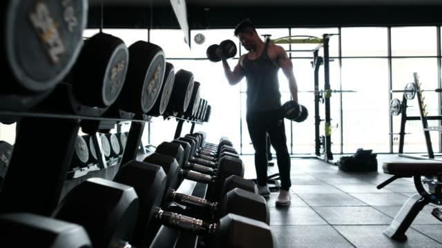 vídeos de stock, filmes e b-roll de body builder-pesos de elevação - braço humano