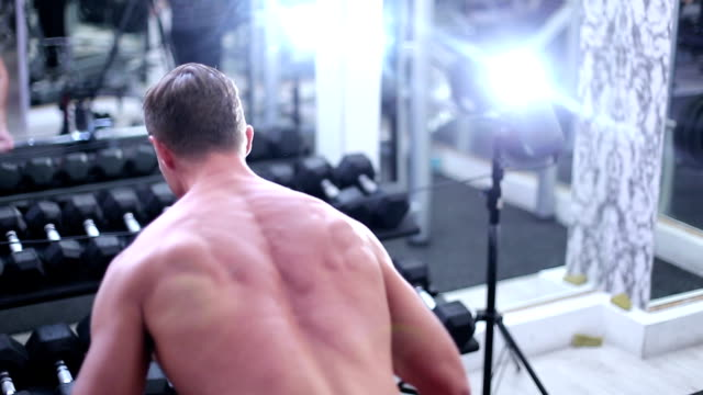 body building workout - arm curl stock videos & royalty-free footage