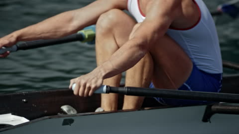 ts body of a male athlete sculling in sunshine - tracking shot stock videos & royalty-free footage