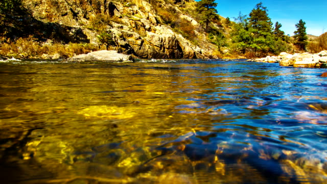body of mountain river water - stream stock videos & royalty-free footage