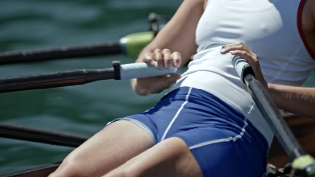 body strength of a female athlete sculling in a double scull on a sunny day - scull stock videos & royalty-free footage