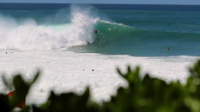 vídeos de stock, filmes e b-roll de bodyboarder catching a wave in pipeline, hawaii - pipeline wave