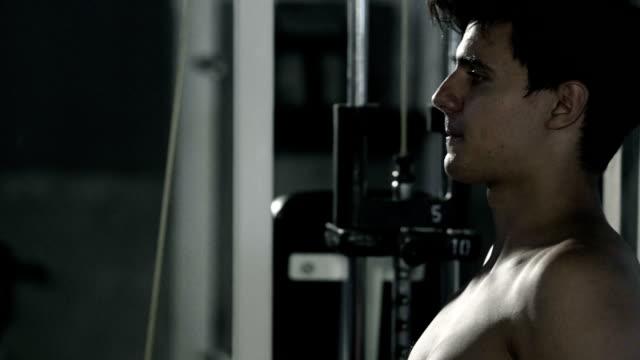 vídeos de stock, filmes e b-roll de bodybuilder exercício - musculação