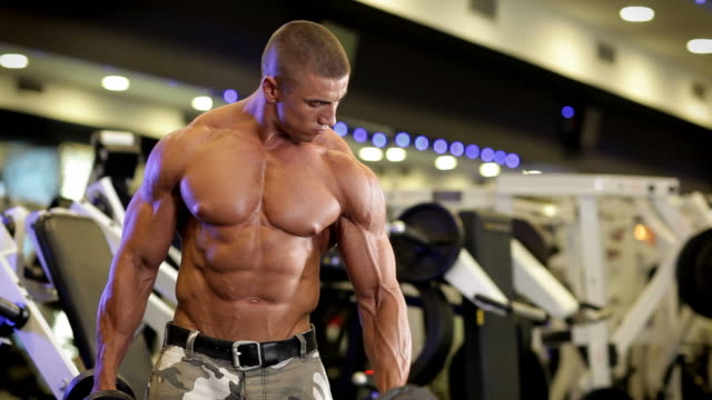 bodybuilding in the gym - arm curl stock videos & royalty-free footage