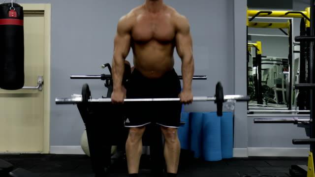 bodybuilding - arm curl stock videos & royalty-free footage