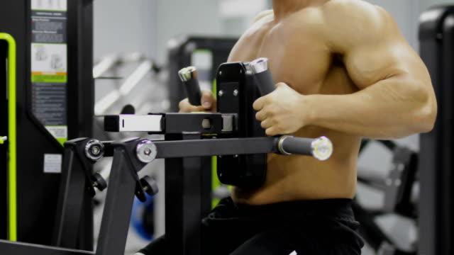 bodybuilding - arm curl stock videos and b-roll footage