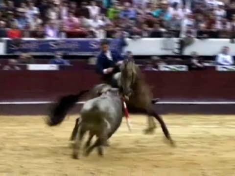 bogota 23 jan spanish horsemounted bullfighter pablo hermoso de mendoza starred at the second bullfight of the season in bogota on sunday and was... - bullfighter stock videos & royalty-free footage