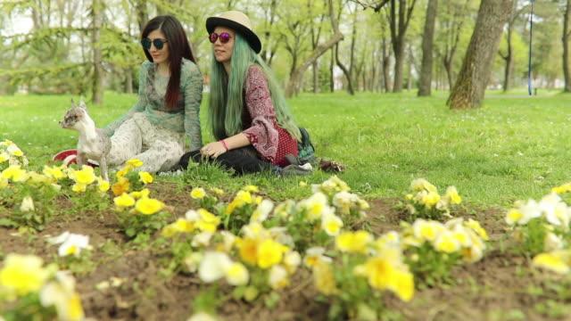 vídeos de stock, filmes e b-roll de meninas de boho e cachorro na primavera - cabelo verde