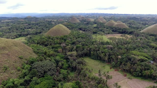 bohol chocolate hills - philippines stock videos and b-roll footage