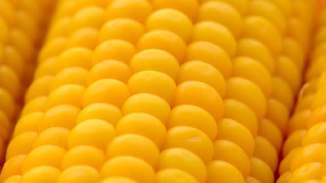 boiled corn in the cob - corn cob stock videos & royalty-free footage
