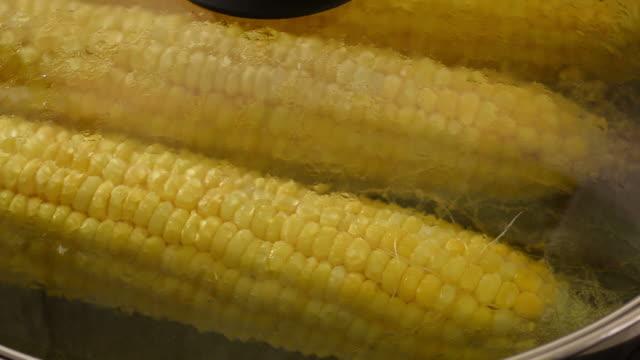 vídeos y material grabado en eventos de stock de hervido maíz - hervido