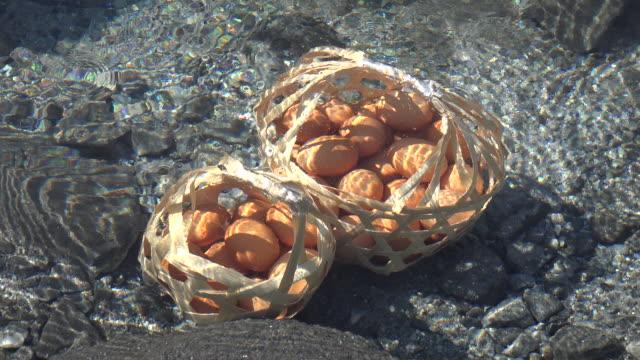 温泉ゆで卵 - 玉子点の映像素材/bロール