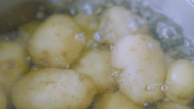 boiling baby potato in a  pot - boiling stock videos & royalty-free footage