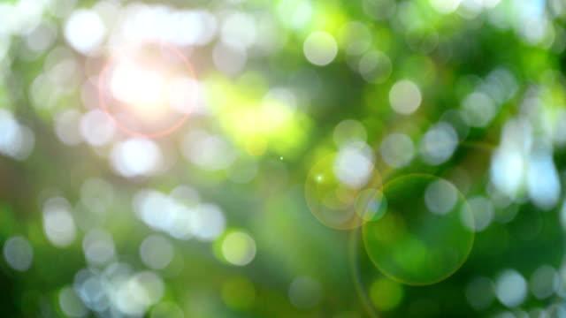 Bokeh hellen Hintergrund