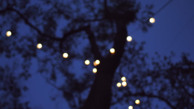 bokeh lights background in party. - garden party stock videos & royalty-free footage