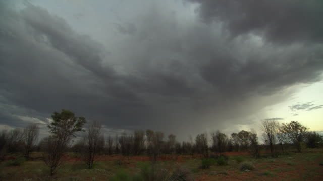 WS LA Bolts of lightning coming from dark strom cloud / Alice Springs, Australia