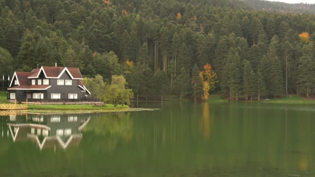 bolu gölcük abant lake national park - rural scene stock videos & royalty-free footage