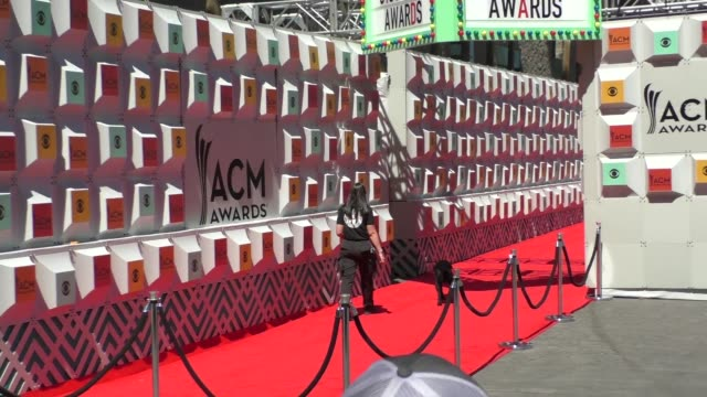 atmosphere bomb sniffing dogs at the 51st academy of country music awards at mgm grand hotel casino in las vegas at celebrity sightings in las vegas... - academy of country music awards stock videos & royalty-free footage