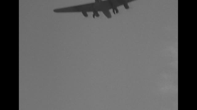 bomber approaches, passes camera / palm trees in foreground and plane flying in sky in background / vs bombers fly behind, above palm trees / long... - mp stock-videos und b-roll-filmmaterial