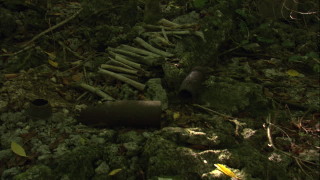 bones and world war ii relics lie on a forest floor in palau. - micronesia stock videos & royalty-free footage