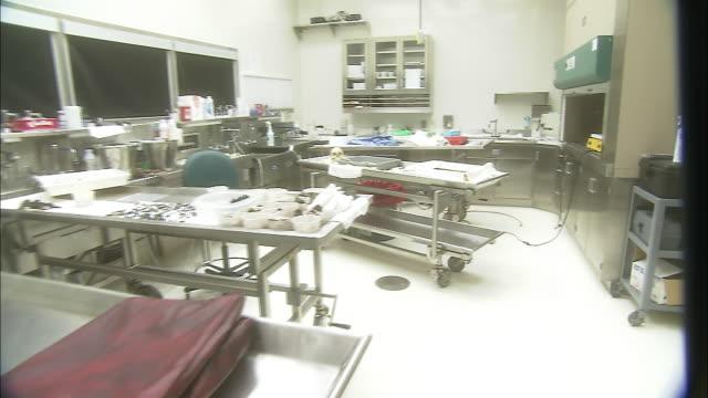 bones rest on a laboratory table in a brightly lit autopsy room. - brightly lit点の映像素材/bロール