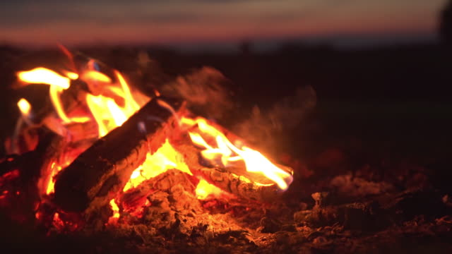 bonfire close up. summer activities - conceptual symbol stock videos and b-roll footage