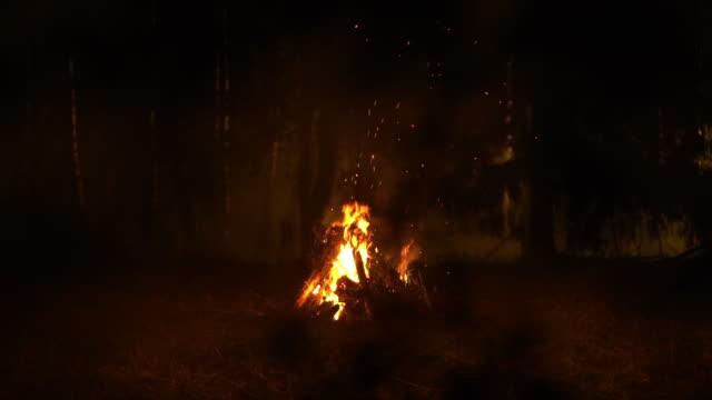 bonfire closeup - cerimonia video stock e b–roll