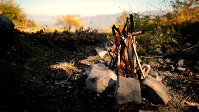 vidéos et rushes de feu de joie dans le trou, bois et pierres dans la forêt - survie