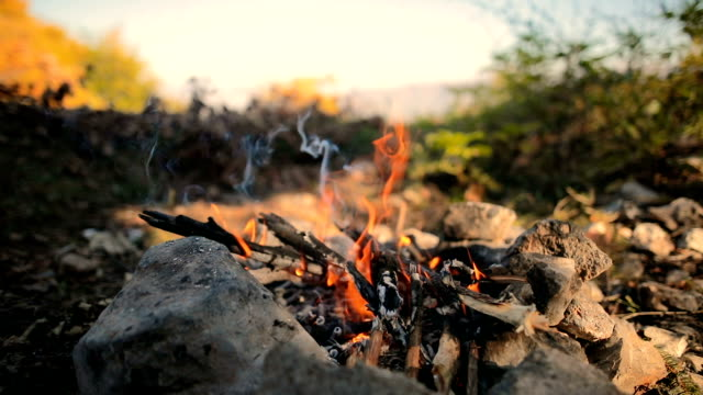 bonfire in the hole , wood and stones in the forest - campfire stock videos & royalty-free footage