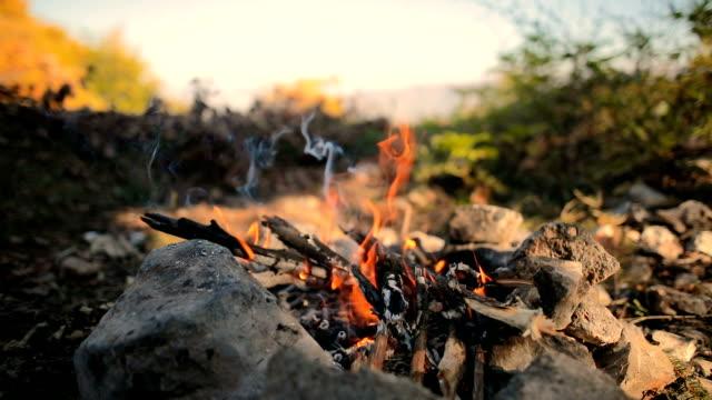 brasa i hålet, trä och stenar i skogen - lägereld bildbanksvideor och videomaterial från bakom kulisserna
