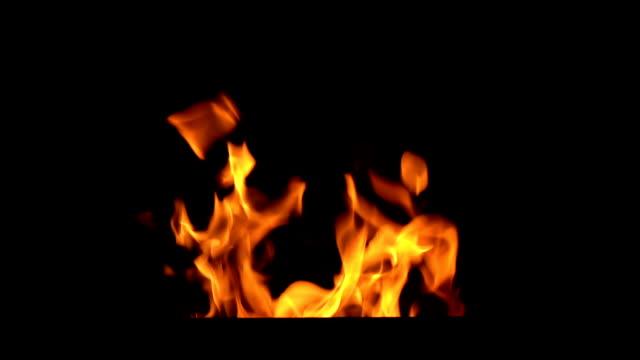 焚き火は黒に孤立 - オレンジ色点の映像素材/bロール