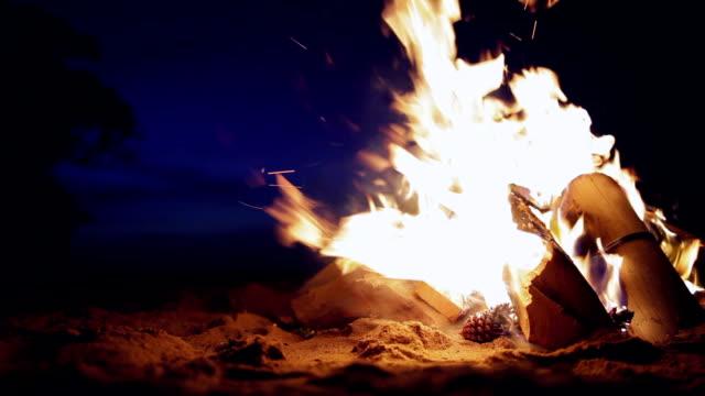 vídeos de stock e filmes b-roll de fogueira na praia ao pôr do sol - madeira material