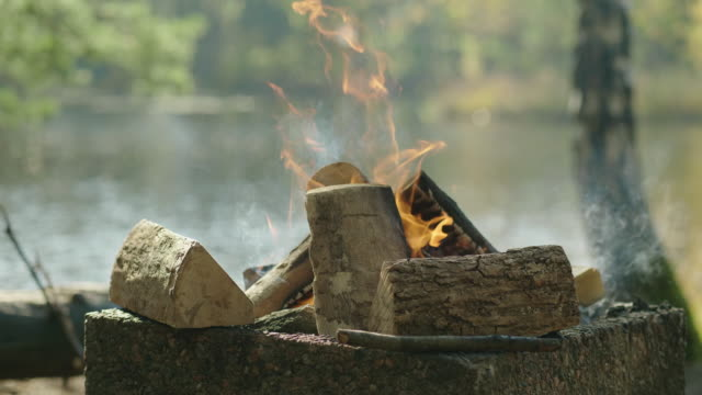 a bonfire out in a swedish forest - lake stock videos & royalty-free footage