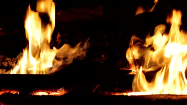 bonfire - open fire stock videos & royalty-free footage