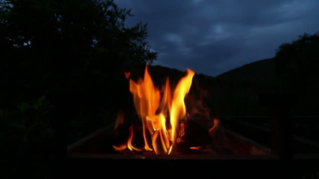 holzfeuer - lagerfeuer stock-videos und b-roll-filmmaterial