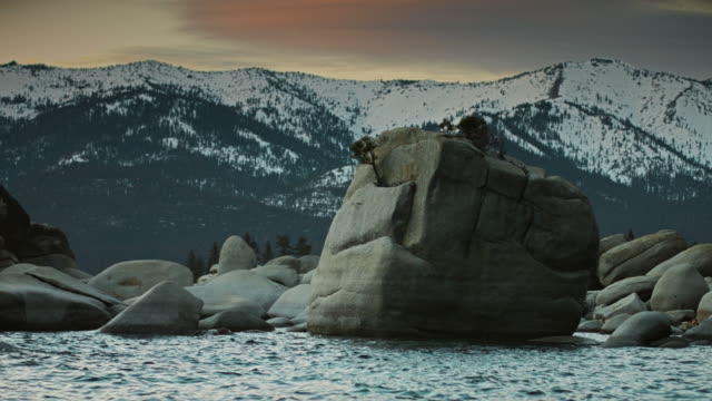 bonsai rock, lake tahoe at sunset - boulder rock stock-videos und b-roll-filmmaterial