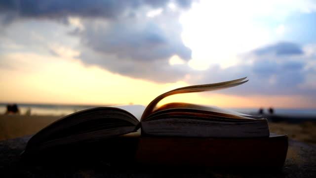 vídeos de stock e filmes b-roll de book flip at beach on sunset beach - página