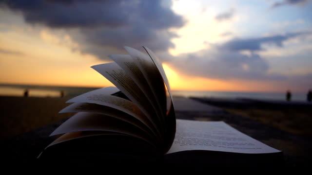 vidéos et rushes de livre flip à la plage sur sunset beach - littérature