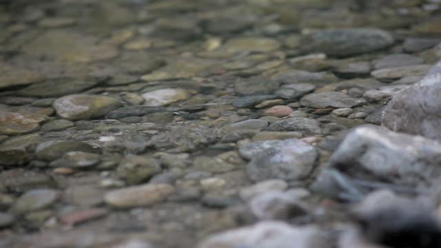 vídeos y material grabado en eventos de stock de c/u boot footstep on stream - pisada