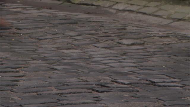 booted feet walk along a cobblestone street. - kullersten bildbanksvideor och videomaterial från bakom kulisserna
