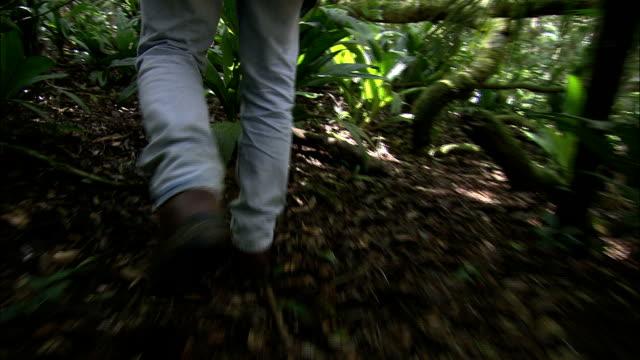 booted feet walk through a lush forest. - ブーツ点の映像素材/bロール