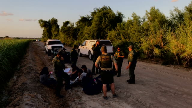 a us border patrol agent search for a group of undocumented immigrants hiding in a sugarcane field near the usmexico border on june 12 2018 near... - 地理的境界点の映像素材/bロール